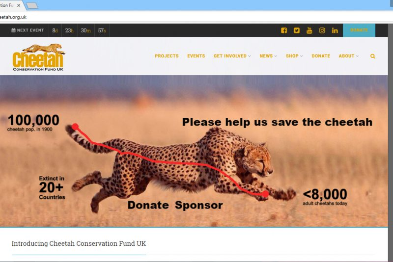 Cheetah Conservation Fund UK