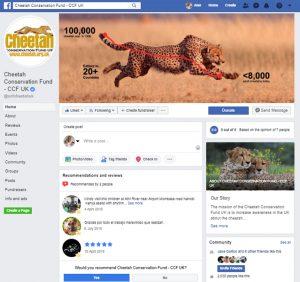 Cheetah Conservation Fund UK